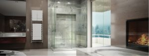 extreme-glass-bathroom